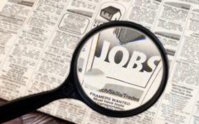 Peste 1.300 de locuri de muncă disponibile