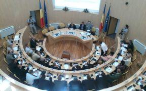 Alianţă PNL - FDGR pentru Consiliul Judeţean Sibiu