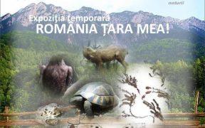 Muzeul de Istorie Naturală găzduieşte expoziţia: România ţara mea!