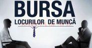 """""""Bursa generală a locurilor de muncă"""" la Sibiu"""