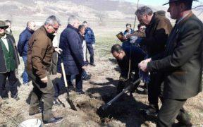 Ministrul Daneș a plantat pomi la Copșa Mică