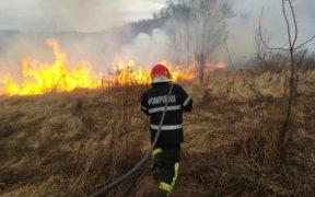 Incendiu de vegetație în Mediaș