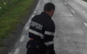 Doi stâlpi au blocat circulația pe DN 14 | Pompierii au intervenit pentru degajare
