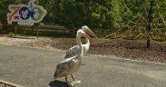 Grădina Zoologică își deschide porțile pentru programul de vară