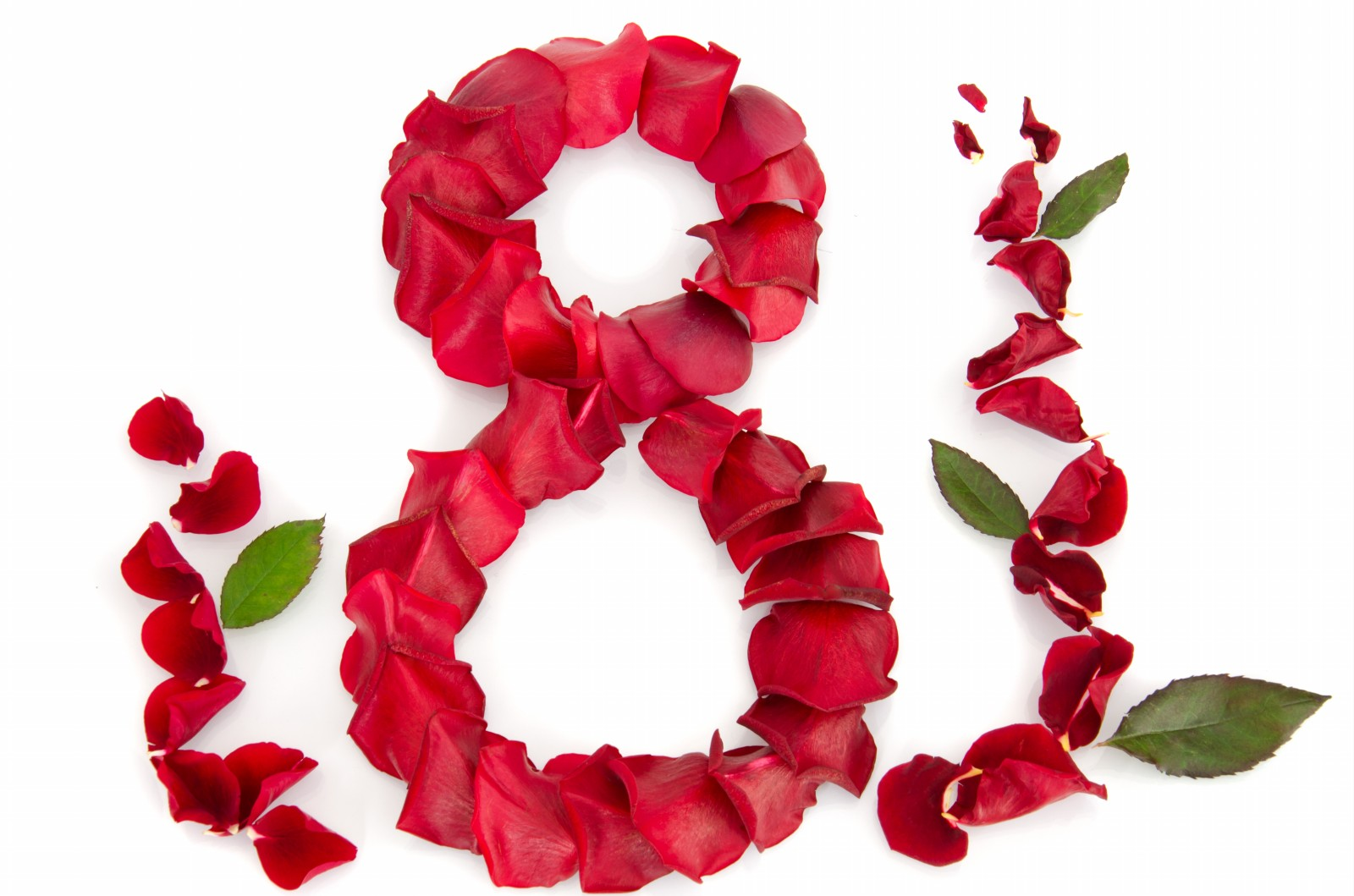 Petrecere de zile mari pentru 200 de femei cu dizabilități care au sărbătorit 8 Martie