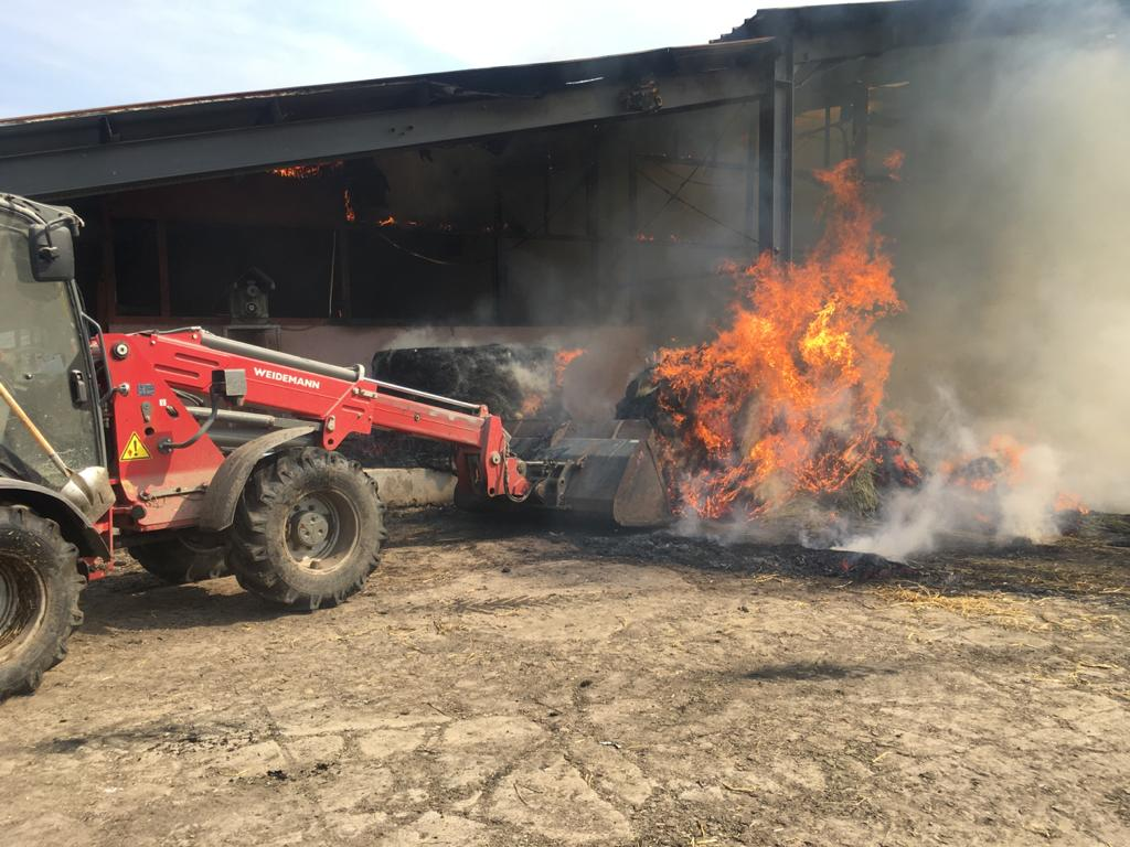 O fermă din Moșna plină cu animale a luat foc. Pompierii au intervenit de urgență