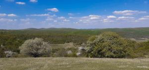 Foto | În satul Hamba, natura este cel mai mare artist al Pământului