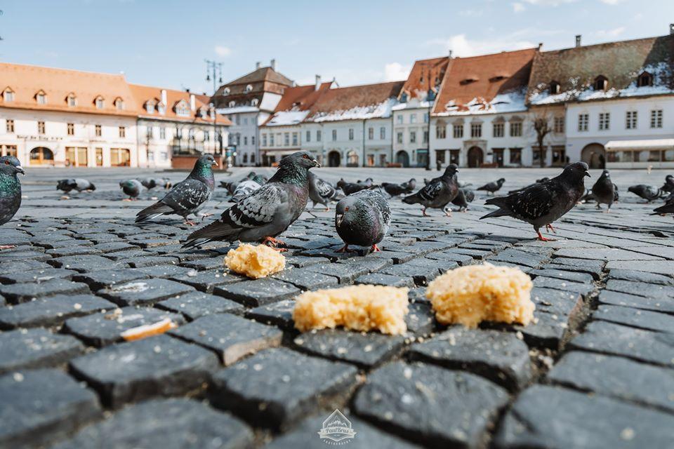 Sibiul a fost ales de turiști în topul orașelor de nota 10