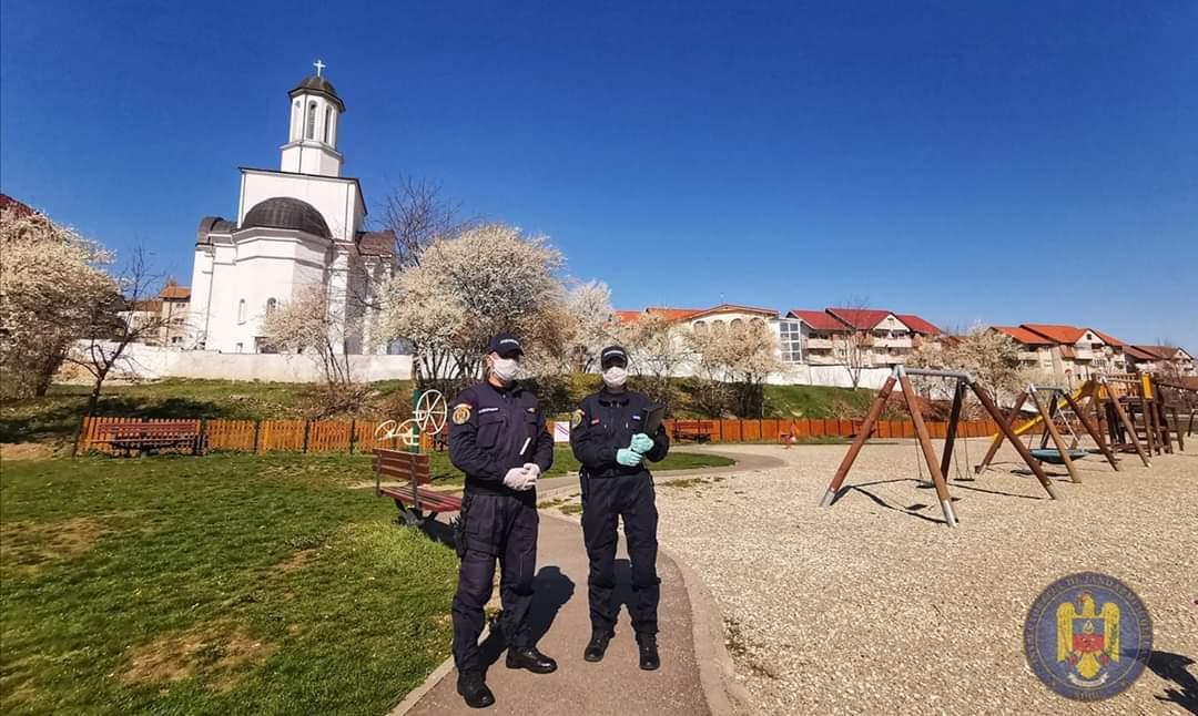 Mesajele instituțiilor sibiene pentru românii cu nume de Floare