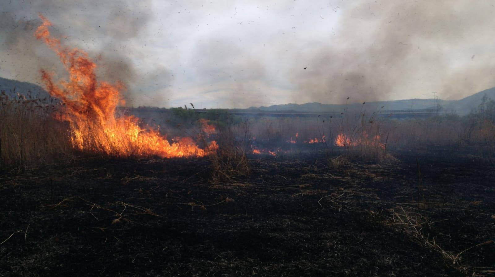 A ars aproximativ 1 ha jumătate de vegetație uscată în zona DN1