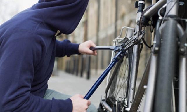 Patru minori au ajuns la Poliție după ce au furat o motocoasă și o bicicletă