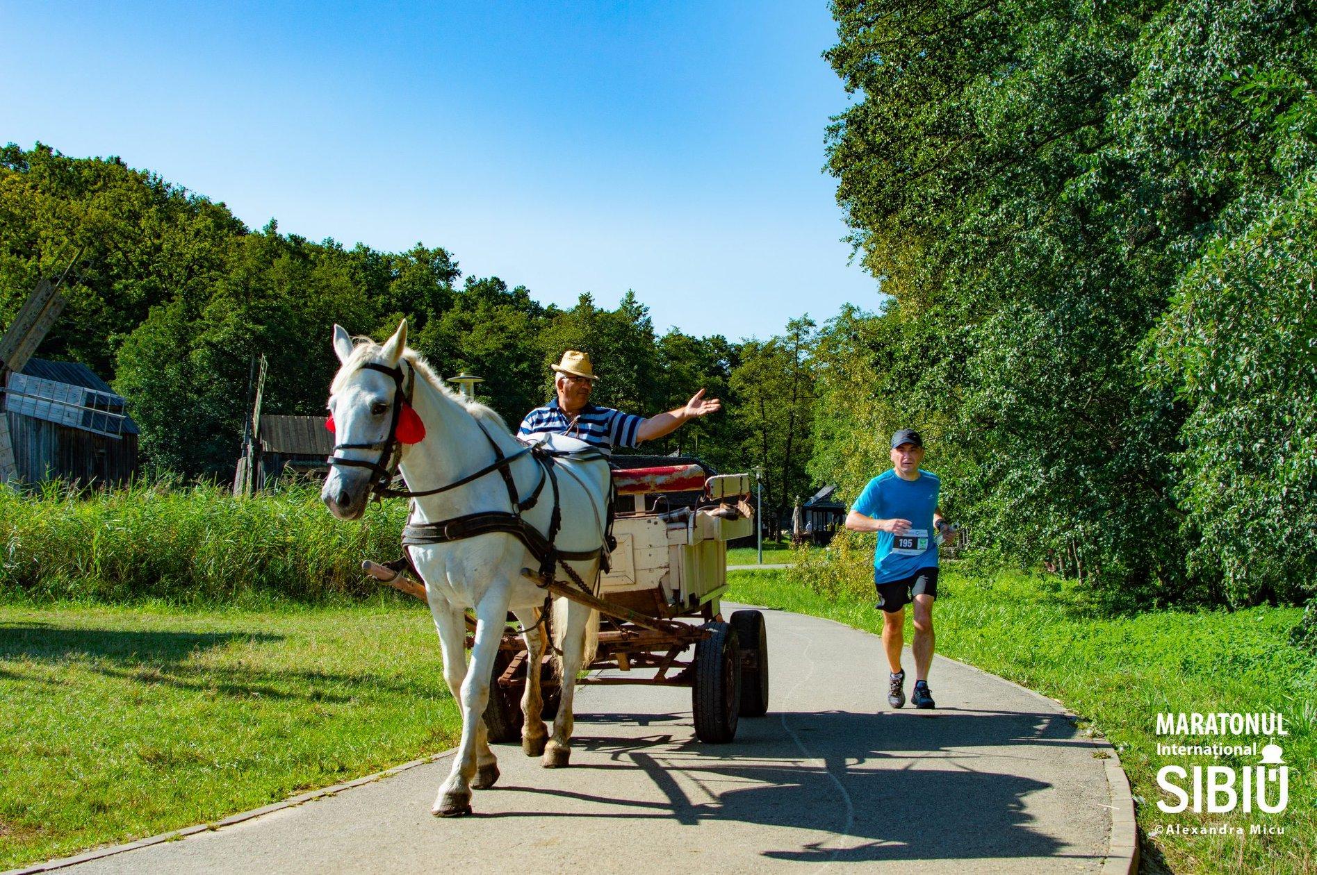 Bilanțul Maratonului Internațional Sibiu 2020: 30 de cauze, 300 de voluntari, 650 de alergători