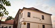 """Teatrul pentru Copii și Tineret """"Gong"""" Sibiu prezintă o nouă grilă de program pentru atelierele online"""