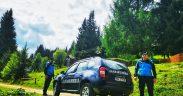 Jandarmii au sancționat contravențional un bărbat cu amendă în valoare de 1000 lei