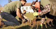 Peste 50 de persoane au participat la acțiunea de ecologizare și plantare pomi fructiferi în cadrul proiectului REVEAL Alma Vii