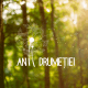 Anii Drumeției: județul Sibiu, destinație atractivă pentru ecoturism