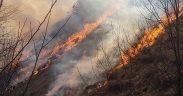 ISU Sibiu face apel la cetăţeni să respecte măsurile specifice de prevenire a incendiilor