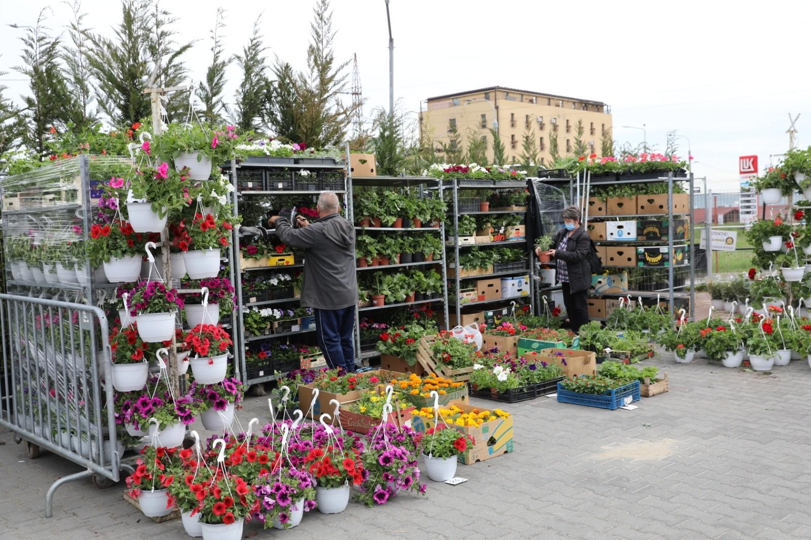 FOTO- Sibiul prinde culoare prin petale! Festivalul Grădinilor adună iubitorii de flori și frumos în acest weekend