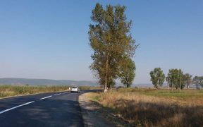 CJ Sibiu a lansat licitația pentru realizarea pistei de biciclete de pe DJ 105G, între localitățile Avrig și Mârșa