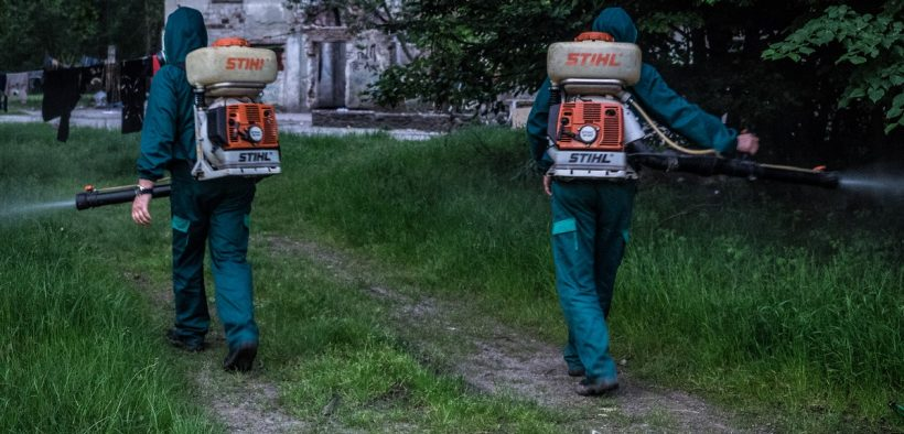 Primăria Sibiu desfășoară o nouă acțiune de dezinsecție împotriva căpușelor și a țânțarilor