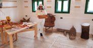 Atelier de extragere a mierii din faguri la Muzeul ASTRA