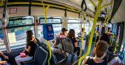 trasee de transportul public