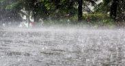Ploi abundente și vânt puternic în județul Sibiu
