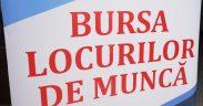 """Peste 200 de avrigeni și-au depus dosarele la """"Bursa locurilor de muncă"""""""